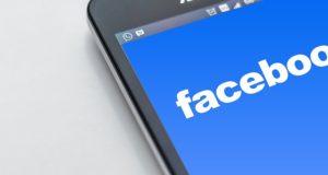 haustier vermisst facebook